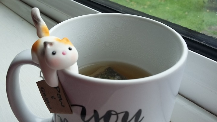 Gizmos CatNip Tea brewing...