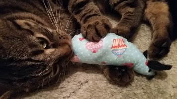 Gizmo LOVES his cupcake mouse!