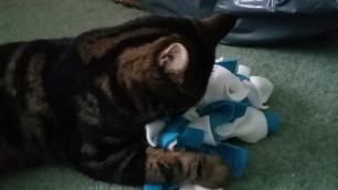 Gizmo and Tillypops Raggati Rug